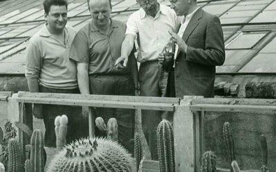 Kaktus ABC – E